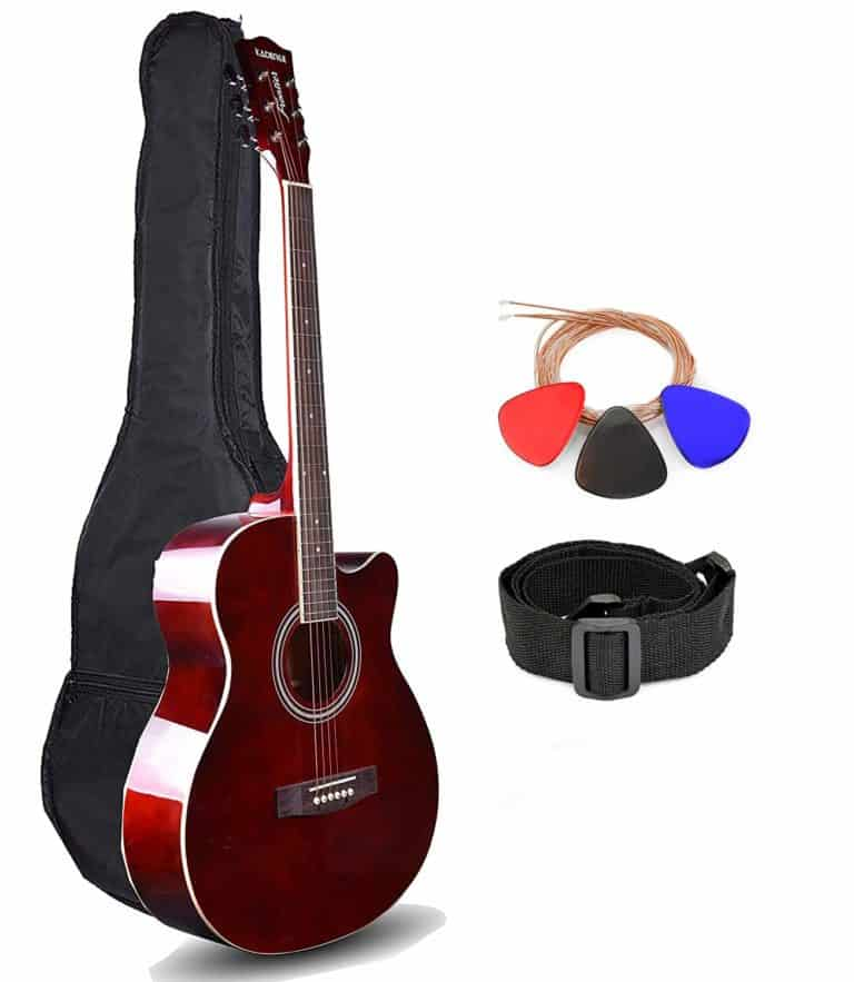 best guitar for beginners india